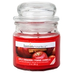 Luminessence Apple Cinnamon Mini Glass Apothecary Jar Candle, 3 oz.
