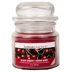 Luminessence Black Cherry Mini Glass Apothecary Jar Candle, 3 oz.